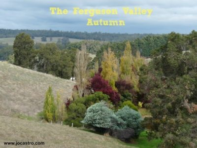 ferguson-valley-seasons