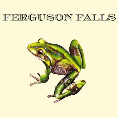 Ferguson-Falls