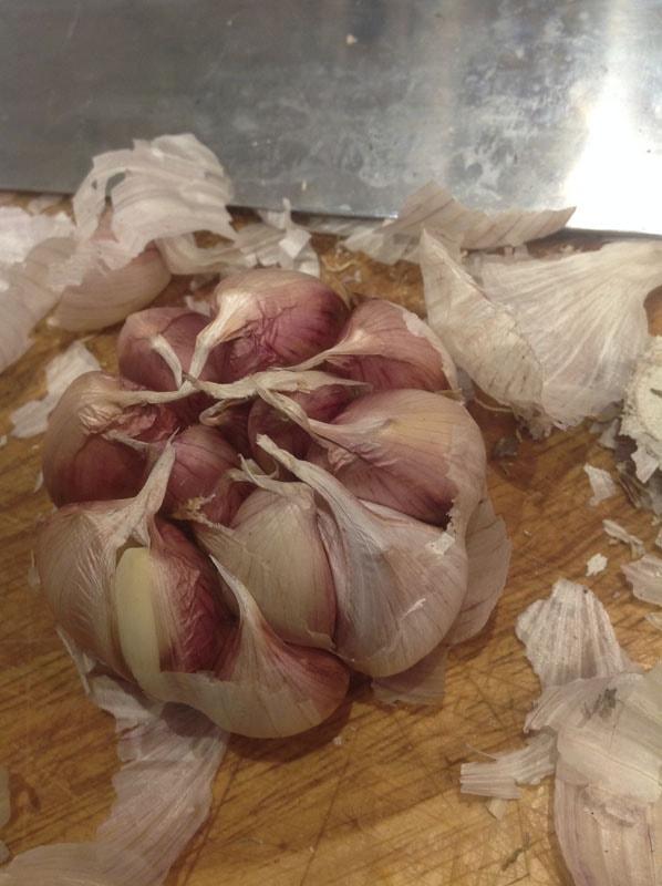PLL Garlic Bulb