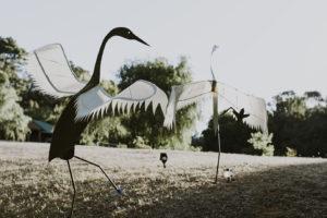 Art & Sculpture in the Ferguson Valley